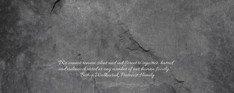 Web banner - Bishop Walkowiak Pentecost homily quote