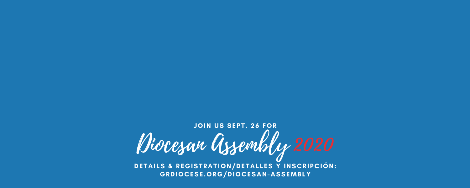 Diocesan Assembly 2020 web banner - text only