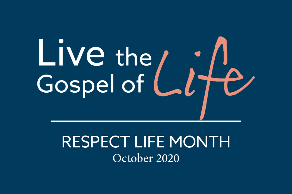 Respect Life Month 2020 graphic, featured